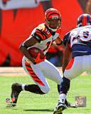 Cincinnati Bengals - Chris Henry Photo Photo