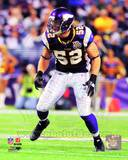 Minnesota Vikings - Chad Greenway Photo Photo
