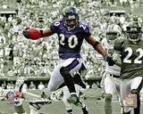 Baltimore Ravens - Ed Reed Photo Photo
