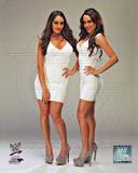 World Wrestling Entertainment - Brie Bella, Nikki Bella, The Bella Twins Photo Photo
