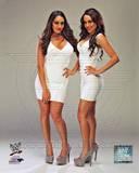 World Wrestling Entertainment - Brie Bella, Nikki Bella, The Bella Twins Photo Photo