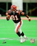 Cincinnati Bengals - Carl Pickens Photo Photo