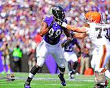Baltimore Ravens - Chris Canty Photo Photo