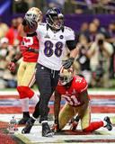 Baltimore Ravens - Dennis Pitta Photo Photo