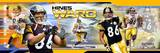 Pittsburgh Steelers - Hines Ward Panoramic Photo Photo
