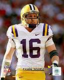 LSU Tigers - Craig Steltz Photo Photo