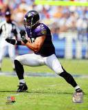 Baltimore Ravens - Jarrett Johnson Photo Photo