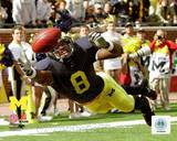 Michigan Wolverines - Jason Avant Photo Photo
