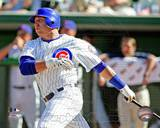 Chicago Cubs - Jake Fox Photo Photo