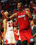 Miami Heat - Chris Bosh Photo Photo