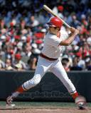 Boston Red Sox - Fred Lynn Photo Photo