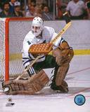 Hartford Whalers - Mike Liut Photo Photo