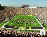 LSU Tigers Photo Photo