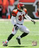 Cincinnati Bengals - Roy Williams Photo Photo