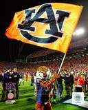 Auburn Tigers Photo Photo