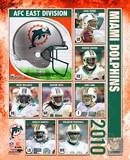 Miami Dolphins Photo Photo