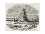 Deer Antler Pile Old Illustration, Missouri (Native Americans Tradition) Prints by  marzolino
