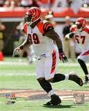 Cincinnati Bengals - Tank Johnson Photo Photo