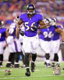Baltimore Ravens - Josh Bynes Photo Photo