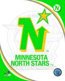 Minnesota North Stars Photo Photo