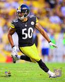 Pittsburgh Steelers - Larry Foote Photo Photo