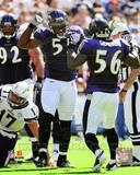 Baltimore Ravens - Terrell Suggs Photo Photo