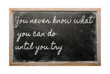 Expression - You Never Know What You Can Do Until You Try - Written On A School Blackboard Poster by  vepar5