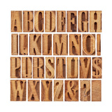 Alphabet in Modern Letterpress Wood Type Printing Blocks Print by  PixelsAway