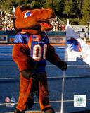 Boise State Broncos Photo Photo