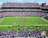 Baltimore Ravens Photo Photo
