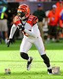 Cincinnati Bengals - Reggie Nelson Photo Photo