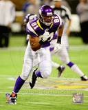 Minnesota Vikings - Visanthe Shiancoe Photo Photo