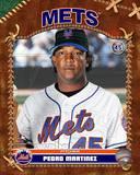 New York Mets - Pedro Martinez Photo Photo
