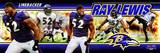 Baltimore Ravens - Ray Lewis Panoramic Photo Photo