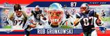 New England Patriots - Rob Gronkowski Panoramic Photo Photo