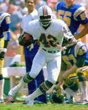 Miami Dolphins - Paul Warfield Photo Photo