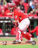 Cincinnati Reds - Ryan Hanigan Photo Photo