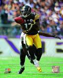 Pittsburgh Steelers - Mike Wallace Photo Photo