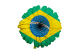 Gerbera Daisy Flower In Colors National Flag Of Brazil On White Background As Concept And Symbol Art by  vepar5