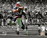 New England Patriots - Wes Welker Photo Photo