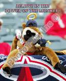Los Angeles Angels - Rally Monkey Photo Photo