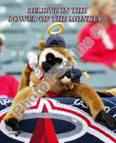 Los Angeles Angels - Rally Monkey Photo Photo