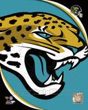 Jacksonville Jaguars Photo Photo