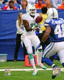 Miami Dolphins - Mike Wallace Photo Photo