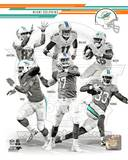 Miami Dolphins - Mike Wallace, Cameron Wake, Brian Hartline, Daniel Thomas, Ryan Tannehill, Lamar M Photo