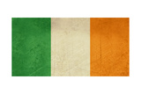 Grunge Officall Flag Of The Irish Tricolor, Republic Of Ireland Posters by  Speedfighter