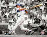 Chicago Cubs - Ryne Sandberg Photo Photo