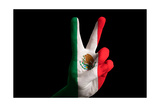Mexico National Flag Two Finger Up Gesture For Victory And Winner Symbol Made With Hand Posters by  vepar5