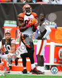 Cincinnati Bengals - Terrell Owens Photo Photo