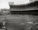 New York Yankees Photo Photo
